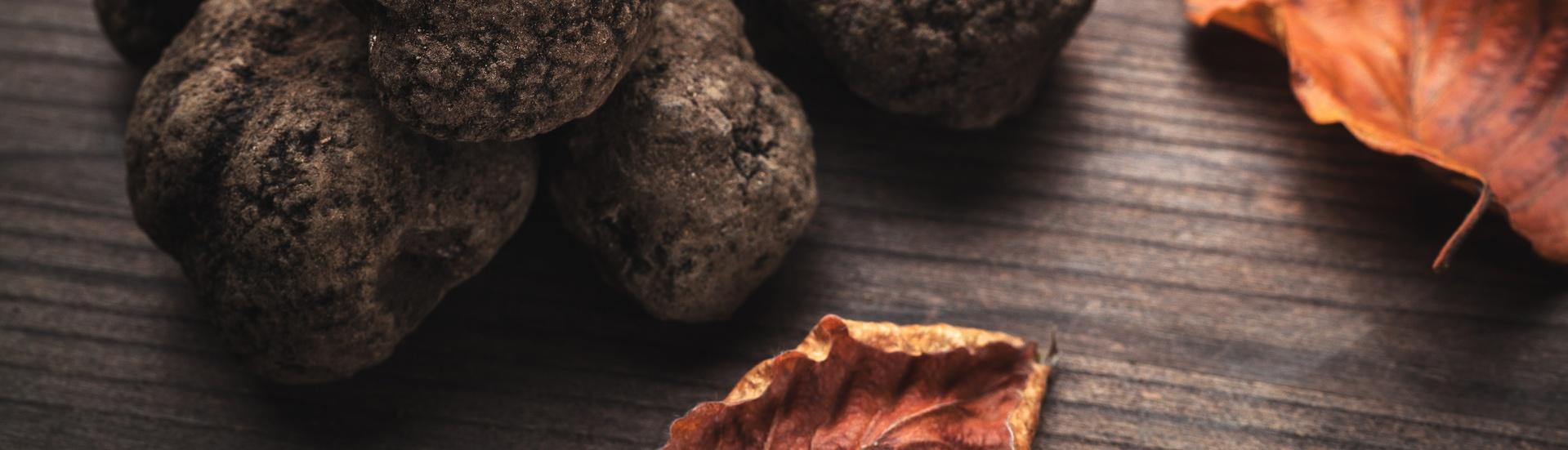 North America Truffle Grower Survey