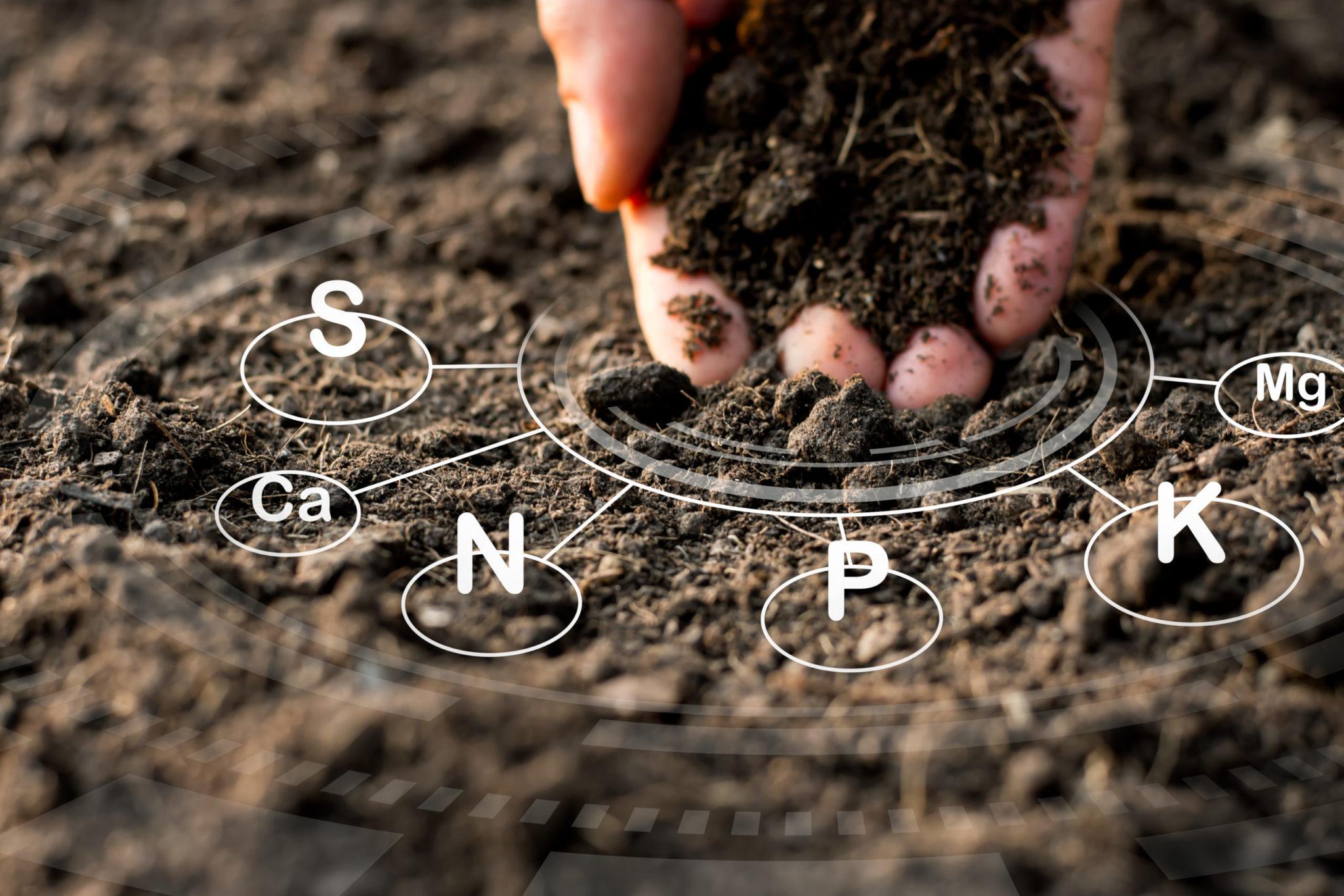 [Webinar]Dwayne Tate: Basic Principles of Liming and Soil Acidity